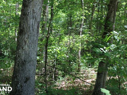Sulligent Homesite or Campsite : Sulligent : Lamar County : Alabama