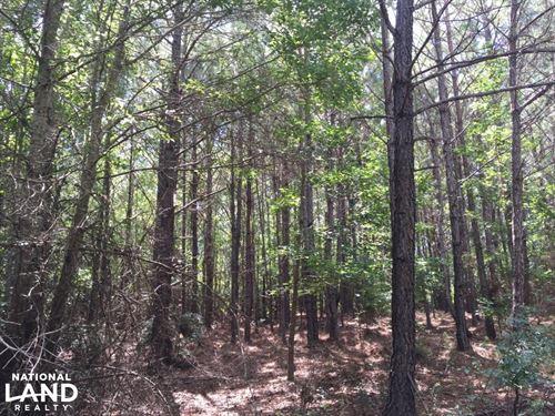 Marshall Road Homesite : Wetumpka : Elmore County : Alabama