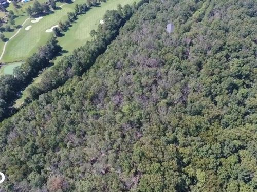 Saddlecreek Farms Homesite : Birmingham : Shelby County : Alabama