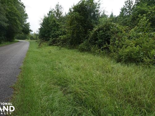 Sandy Fork Road Homesite Parcel 3 : Moundville : Hale County : Alabama