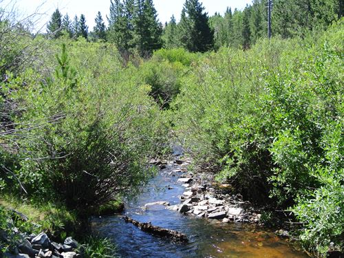 Beaver Creek Retreat Lot : Lander : Fremont County : Wyoming