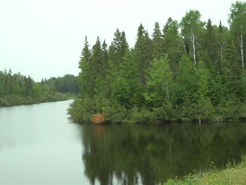 4.55 Acres In Chapman, me : Chapman : Aroostook County : Maine
