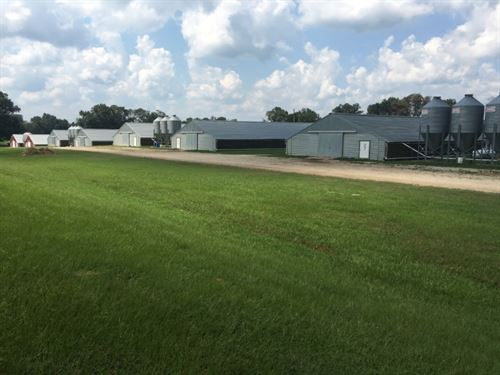 20 Acres In Neshoba County Poultry : Philadelphia : Neshoba County : Mississippi