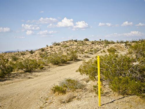 Desert Dream Land - Half Off : Yucca Valley : San Bernardino County : California