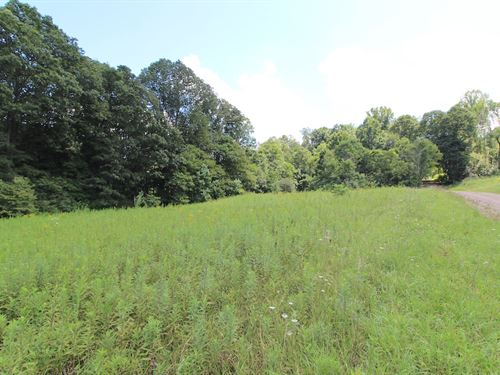 Delphi Rd - 10 Acres : Freeport : Guernsey County : Ohio