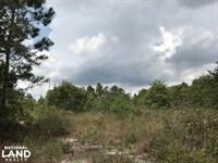 10 Acre Homestead : Roseboro : Sampson County : North Carolina