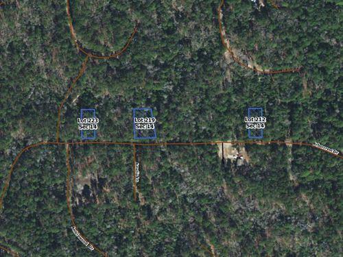 .41 Acres In Brookeland, tx : Brookeland : Jasper County : Texas
