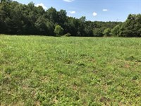 4.1 Acre Homesite In Pauline, Sc : Spartanburg : Spartanburg County : South Carolina