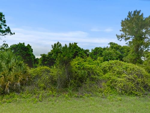 .49 Acres In North Port, FL : North Port : Sarasota County : Florida