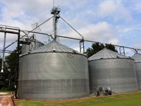 Grain Prcss/Drying/Storage Facility : Ripley : Lauderdale County : Tennessee