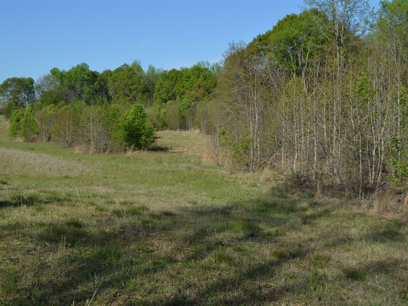 19 Acres Of Development Land : Inman : Spartanburg County : South Carolina