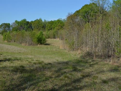 19 Acres Of Development Land : Inman : Spartanburg County : South Carolina