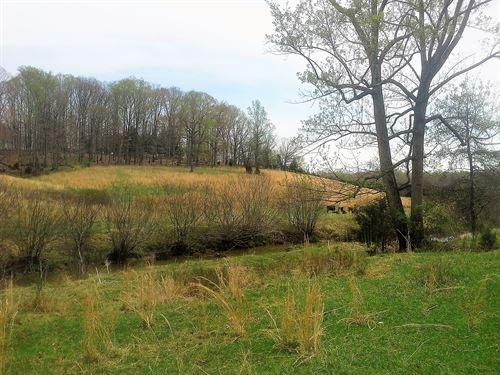 15+ Acres With Bold Stream In Va : Moneta : Bedford County : Virginia