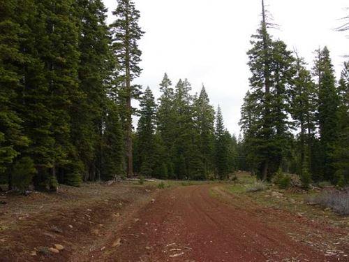 California, Modoc County : Alturas : Modoc County : California