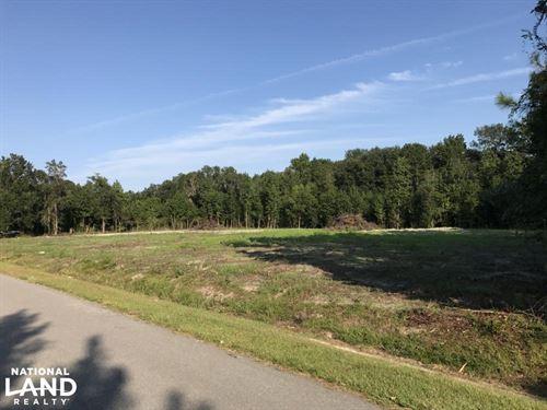 Gardens Corner Horace Dawson Ln 2.5 : Seabrook : Beaufort County : South Carolina