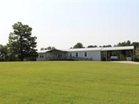 4d Ranch : Bedias : Grimes County : Texas