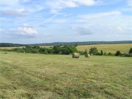 Pasture, Views, Owner Finance : Dunlap : Sequatchie County : Tennessee
