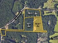 10.6+/- Ac Of Land On Jim Jones : Tuscaloosa : Tuscaloosa County : Alabama