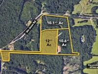 12.0 +/- Ac Of Land On Jim Jones : Tuscaloosa : Tuscaloosa County : Alabama