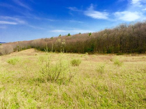 4.5 Acre Building Lot In Millville : Millville : Columbia County : Pennsylvania
