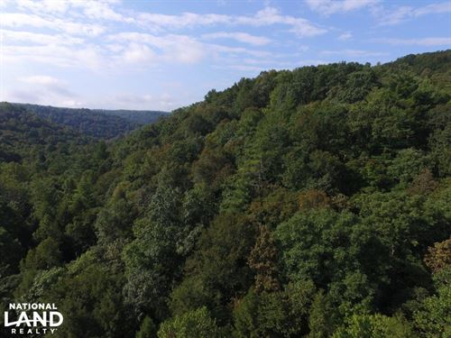 Beautiful 10 Acre Plateau Property : Wartburg : Morgan County : Tennessee