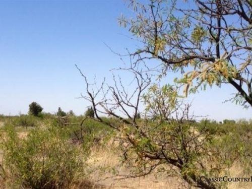 Cochise County Tract 5 : Douglas : Cochise County : Arizona