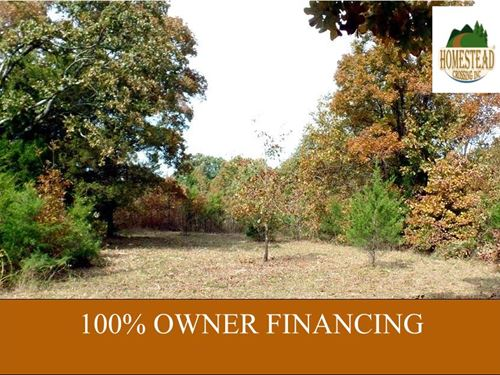 3 Acres, Level, Electric, Fenced : Elk Creek : Texas County : Missouri