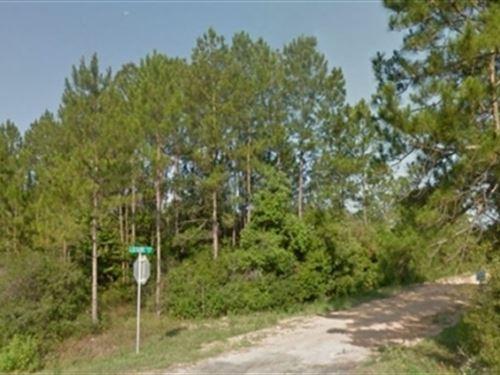 Florida, Bay County, 0.46 Acres : Fountain : Bay County : Florida