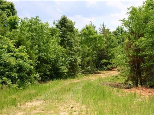 Tennessee, Carroll County : Huntingdon : Carroll County : Tennessee