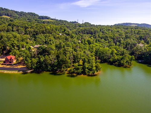 Cherokee Lake Main Front Lot : Mooresburg : Hawkins County : Tennessee