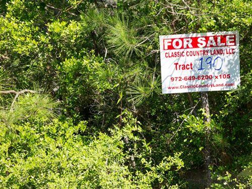 Rayburn Country Tract 190 : Brookeland : Jasper County : Texas