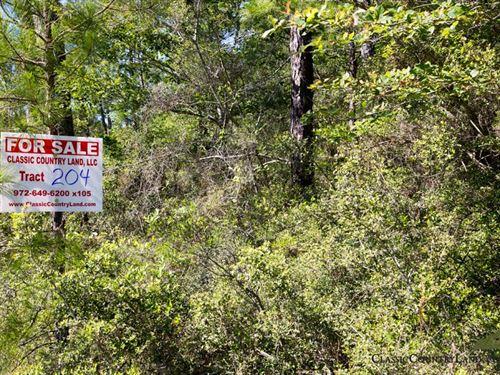 Rayburn Country Tract 204 : Brookeland : Jasper County : Texas