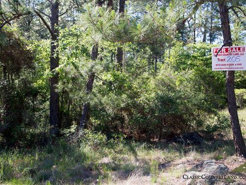 Rayburn Country Tract 205 : Brookeland : Jasper County : Texas