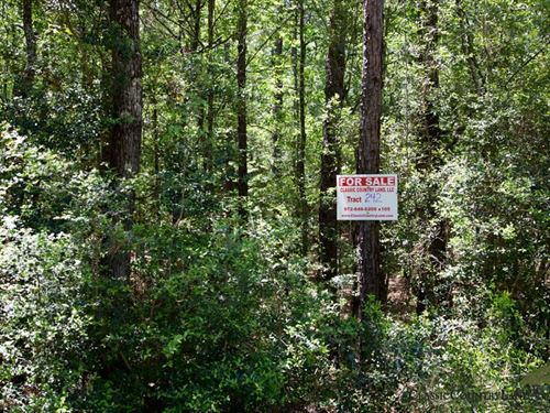 Rayburn Country Tract 242 : Brookeland : Jasper County : Texas