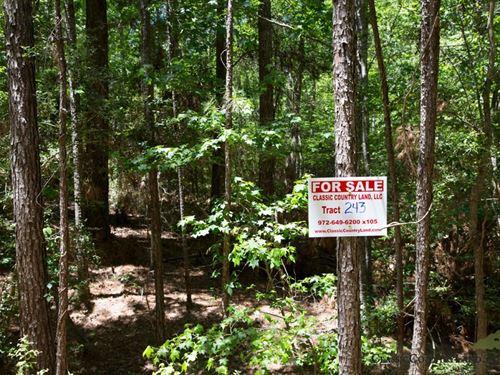 Rayburn Country Tract 243 : Brookeland : Jasper County : Texas