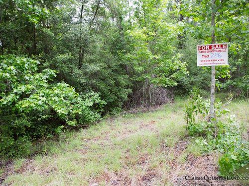 Rayburn Country Tract 286 : Brookeland : Jasper County : Texas