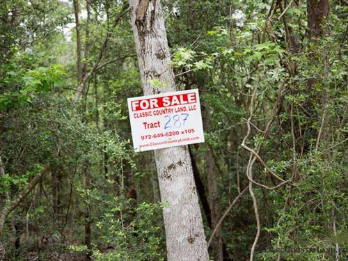 Rayburn Country Tract 287 : Brookeland : Jasper County : Texas