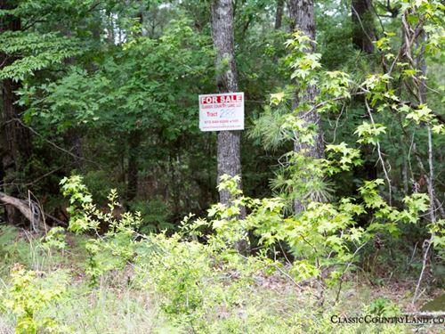 Rayburn Country Tract 288 : Brookeland : Jasper County : Texas