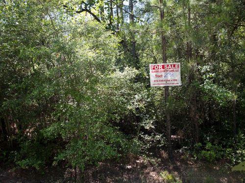 Rayburn Country Tract 299 : Brookeland : Jasper County : Texas