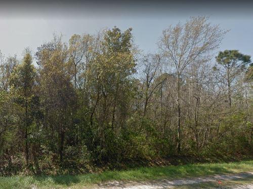 .23 Acres In Panama City, FL : Panama City : Bay County : Florida
