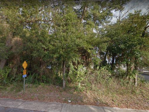 .24 Acres In Gainesville, FL : Gainesville : Alachua County : Florida
