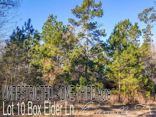 .34 Acres In Grimes County : Plantersville : Grimes County : Texas