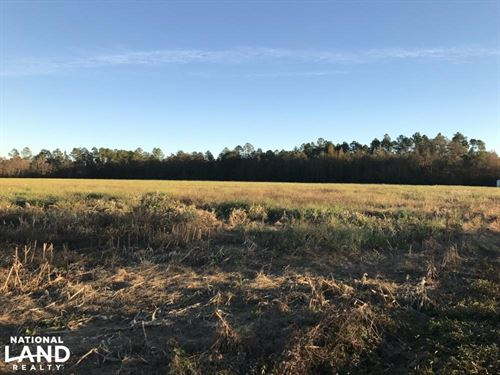 Sunset Farm & Ranch : Atmore : Escambia County : Alabama