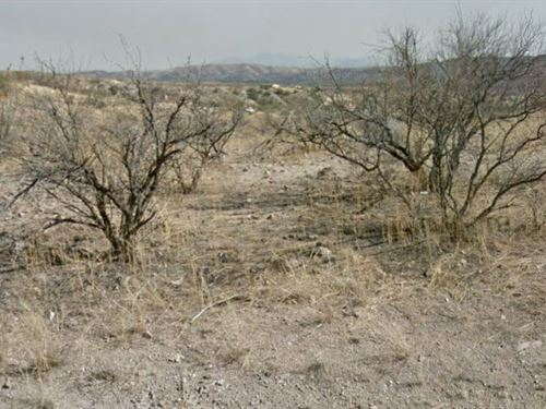 Santa Cruz County, Az $18,000 Neg : Rio Rico : Santa Cruz County : Arizona