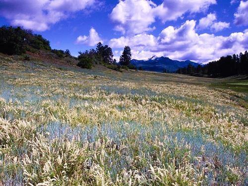 Reserve At Pagosa Peak, Lot 69 : Lake City : Archuleta County : Colorado