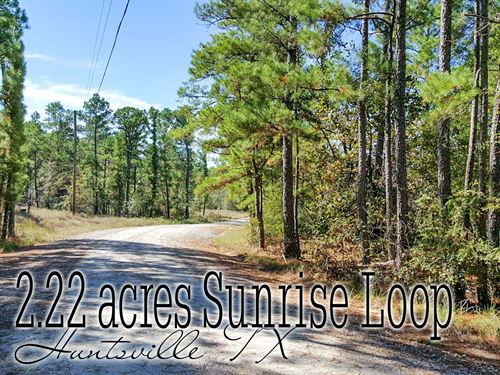 2.22 Acres In Walker County : Huntsville : Walker County : Texas