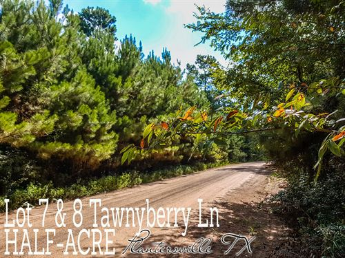 .55 Acres In Grimes County : Plantersville : Grimes County : Texas