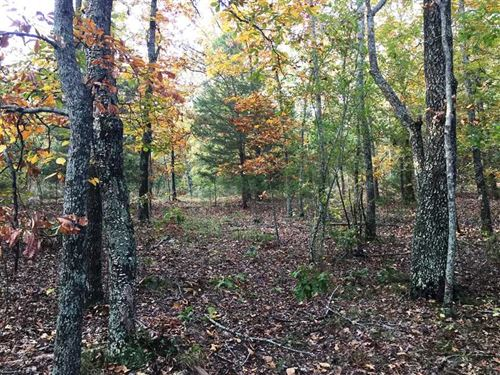 3.91 Acre Wooded Lot in Arnoldsbur : Conway : Faulkner County : Arkansas
