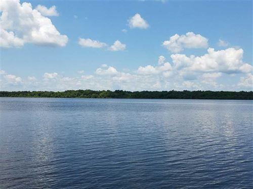 Leo's Lots on Larto Lake, Catahoul : Larto : Catahoula Parish : Louisiana