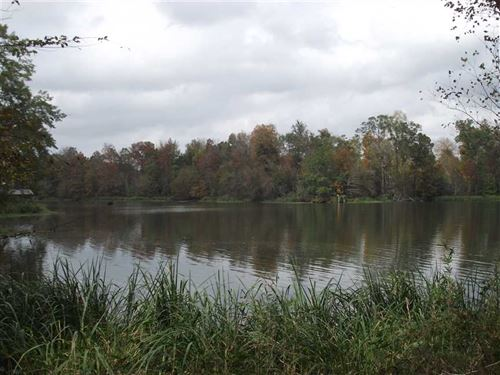 Waterfront Lot in Black Warrior Ba : Eutaw : Hale County : Alabama